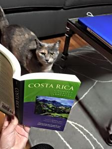 Bean is already doing some research.
